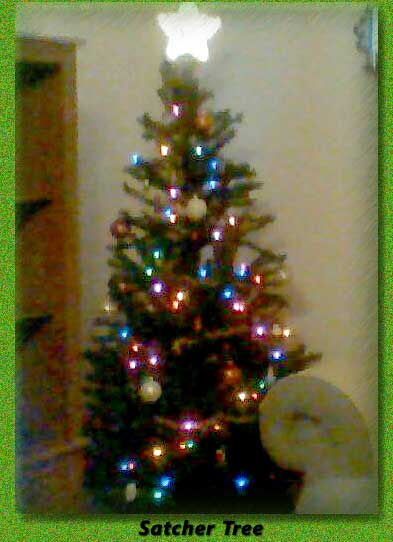 madasTree